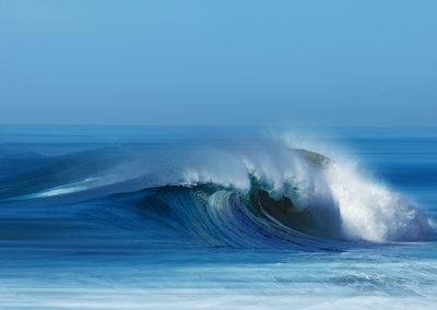 Wave 8978