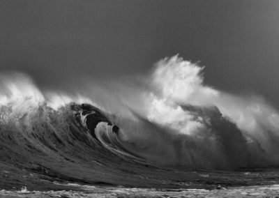 Wave 8171