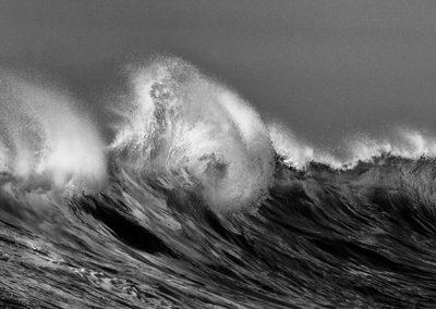 Wave 8770